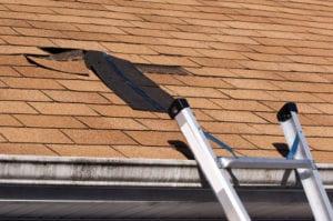 Roof Repair in Florida